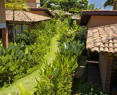 🌿 Condomínio  no litoral de São Paulo  Gil Fialho Paisagismo  #gilfialho #paisagismo #jardim #jardimtropical #garden #landscapedesign #natureza #gilfialhopaisagismo #casadepraia