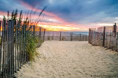 Beach Sunrise, Beach Path, Atlantic Coast Ocean Sunrise, Rehoboth Beach Delaware Photography, Blue,Orange, Seashore wall art