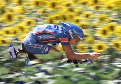 """""""American Tyler Hamilton rides near a field of sunflowers during the 19th stage of the 86th Tour de France, an individual time-trial around the 'Futuroscope' in Poitiers, central France on July 24, 1999.J. Lance Armstrong won the stage. Hamilton finished 3rd. (AFP/Getty Images)"""" #letour #TdF #cycling"""