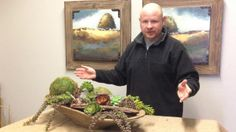Succulent Dough Bowl. Dwayne Anderson from house by JSD shows you how to take a classic dough bowl, and create an amazing centerpiece for a ...