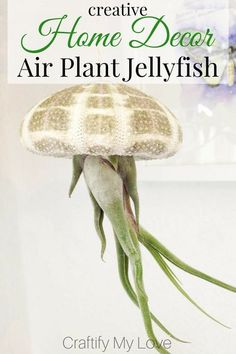 Will you look at this Jellyfish? If that is not Creative Home Decor, then I don't know what, lol!!! It's made from a sea urchin skeleton and air plants. If you are into nautical decorations click through and learn how to DIY this without hurting the plant Garden Design Ideas On A Budget, Garden Design Plans, Garden Ideas, Creative Decor, Creative Home, Diy Garden Decor, Garden Art, Thrift Store Crafts, Lol