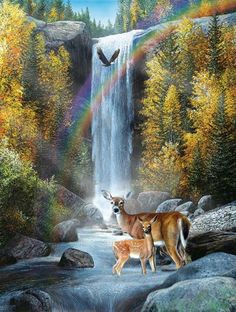 Rainbow Setting - Deer with Waterfall Mini Jigsaw Puzzle 100 Piece Deer Photos, Deer Pictures, Pictures To Paint, Wildlife Paintings, Wildlife Art, Animal Paintings, Wild Life, Waterfall Paintings, Deer Art