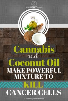 Cannabis And Coconut Oil Make Powerful Mixture To Kill Cancer Cells via @dailyhealthpost | http://dailyhealthpost.com/cannabis-and-coconut-oil-make-powerful-mixture-to-kill-cancer-cells/