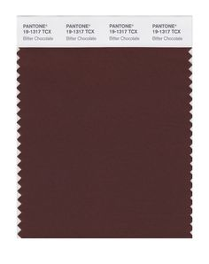 PANTONE SMART 19-1220X Color Swatch Card, Cappuccino - House Paint - Amazon.com