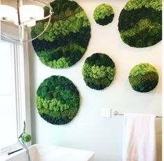 These lush, tranquil moss circles create a natural serene space. Reconnecting with nature is possible at any time with our custom moss art. Zero maint… - All About Moss Garden, Green Garden, Green Plants, Moss Wall Art, Moss Art, Graffiti En Mousse, Lush, Island Moos, Forever Green