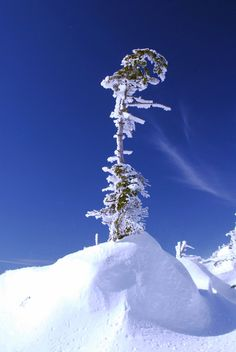 winter at 2500m/height