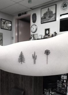by Dr Woo Tattoo / Palm / Cactus / Tree More