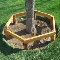 There are lots of affordable backyard landscaping ideas you can look into. For a backyard landscape upgrade, you don't need to spend so much cash to get an outdoor look that is easy and affordable. Tree Seat, Tree Bench, Landscaping Around Trees, Backyard Landscaping, Diy Garden Projects, Outdoor Projects, Bench Around Trees, Outside Benches, Vegetable Garden Tips