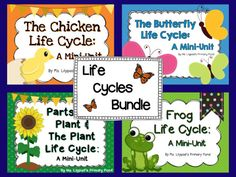 Life Cycles Bundle for Chicken, Butterfly, Frog, and Plant Life Cycles