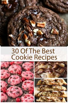 Cookies are a delightful snack for children but also for adults. I bet, you can't store some cookies for your kids in the house. After coming back from school, your baby is always hungry, you can't cook something to eat right now, cookies are really Best Homemade Cookie Recipe, Delicious Cookie Recipes, Best Cookie Recipes, Homemade Cookies, Healthy Recipes, Chewy Sugar Cookies, Annie's Cookies, Xmas Cookies, Dessert Dishes
