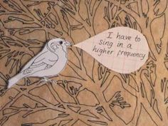 Noise Pollution Birdies
