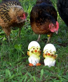 You'll need these to go with the chicks in the wheelbarrow. (Live chickens not included.) Hatching Chicken Salt and Pepper Shakers from HeartSmileFarms on Etsy