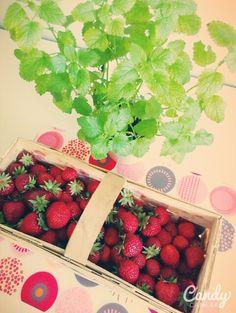I love summer :):)