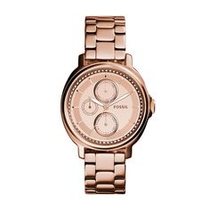 Fossil Ladies´ Chelsey Multifunction Rose Gold-Tone Stainless Steel Case Watch Stainless Steel Watch, Stainless Steel Bracelet, Amazing Watches, Fossil Watches, Stylish Watches, Watches Online, Michael Kors Watch, Gold Watch, Bracelet Watch