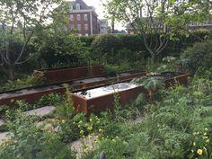 Chelsea Flower Show London 2017 - London Garden Blog