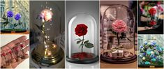 Aprende cómo hacer hermosas botellas decorativas con flores ~ Manoslindas.com Sunflowers And Roses, Snow Globes, Glass Vase, Table Decorations, Cool Stuff, Crafts, Diy, Home Decor, House