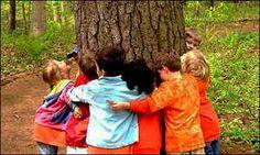 Mi Sala Amarilla: Día del árbol.Proyecto aúlico.