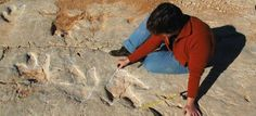 Found in Portugal 700 dinosaur footprints, the largest of the Peninsula | Inside the World