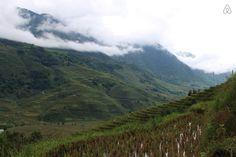 X Sa Pa, Vietnam, Mountains, Nature, Travel, Traditional House, Wayfarer, Naturaleza, Viajes