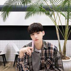 김성환(당근도령)(@hsoun9) • Instagram 사진 및 동영상
