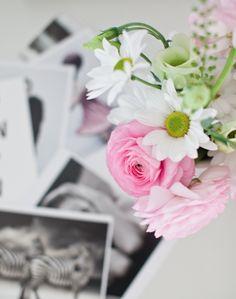 hviit: Blomster i farger