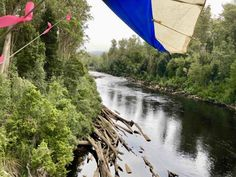travel-tahune-airwalk-glider-river-justthesizzle