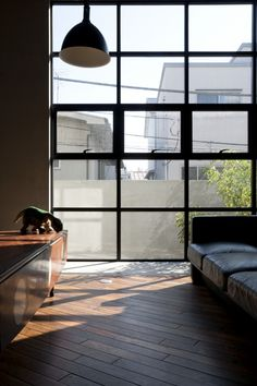 This window is begging for an Avenue & Co feature #blinds  skate park house  by: LEVEL architects