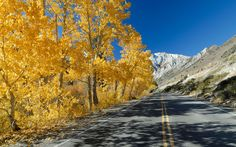 Eastern Sierras, CA - America's Best Fall Foliage Drives | Travel + Leisure