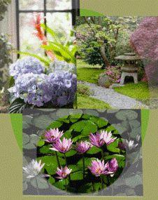 feng shui for gardens | Fengshui- Bookmark » Blog Archive » Garden Feng Shui