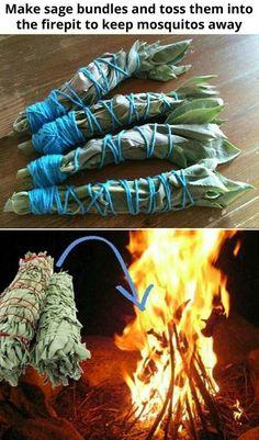 Sage bundles to keep mosquitoes away #coolcampingideasandtricks