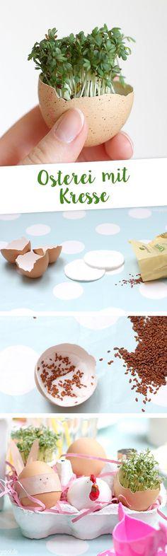 Anleitung für Kresse-Oster-Ei für das Osterfrühstück auf Äntschies Blog