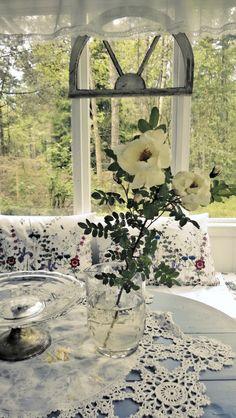 Midsummer rose at veranda. Nordic summer light. Juhannusruusu kuistilla.