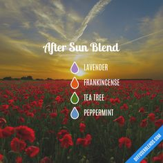 After Sun Blend - Essential Oil Diffuser Blend