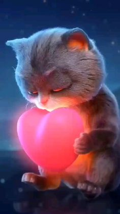Cute Funny Baby Videos, Cute Funny Babies, Funny Animal Videos, Munchkin Kitten, Anime Dancer, Cute Love Wallpapers, Images Disney, Best Friend Songs, Cute Love Pictures