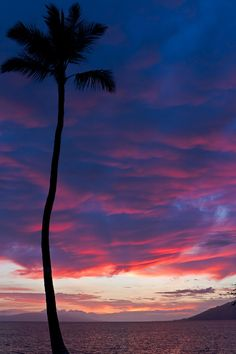 """""""Fire in the Maui Sky"""""""