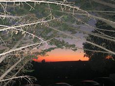 Cool sunset Prunedale CA