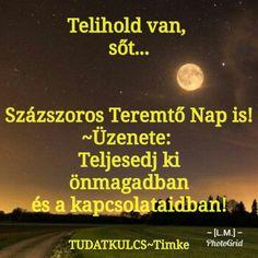 Telihold van! ♡ Tarot, Sad, Movies, Movie Posters, Films, Film Poster, Cinema, Movie, Film