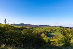 Die Aussicht im Oberen Tal, Wiese, Landschaft, Windschutzhecken, aufgenommen im April