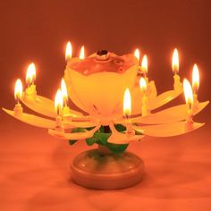 Take your birthday parties to the next level with this Blooming Musical Candle! This amazing, lotus, flower candle plays the birthday song and opens up, as if blooming, into a beautiful flower. Birthday Menu, Birthday Songs, Birthday Celebration, Birthday Wishes, Birthday Parties, Birthday Ideas, Pink Candles, Unique Candles, Best Candles
