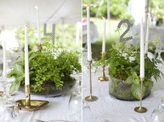 Great post about plant wedding centerpieces using Ikea, Home Depot or Anthropologie