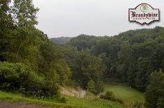 $13 for 18 Holes with Cart at Brandywine Country Club in Peninsula near Cleveland ($45 Value. Expires October 1, 2014!)  https://www.groupgolfer.com/redirect.php?link=1sqvpK3PxYtkZGdjcH2m