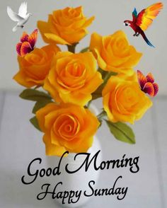 Good Morning Happy Sunday, Cute Good Morning Quotes, Good Morning Inspirational Quotes, Good Morning Wishes, Fun Quotes, Best Quotes, Weekend Greetings, Days Of Week, Good Morning Flowers