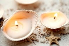 Muschel Kerzen selber machen - 15 einfache Maritime Deko Ideen