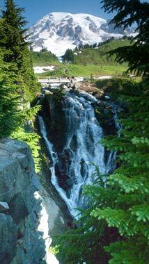 Ride Around Mount Rainier in 2 days. #bike #adventure #bikeovernights