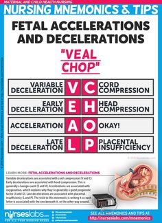 Fetal Accelerations and Decelerations Nursing Mnemonic (VEAL CHOP) Here are Maternal and Child (Newborn) Health Nursing Mnemonics & Tips that are guaranteed to help you understand the concepts behind it! Newborn Nursing, Child Nursing, Ob Nursing, Nursing Tips, Nursing Students, Maternity Nursing, Neonatal Nursing, Postpartum Nursing, Medical Students