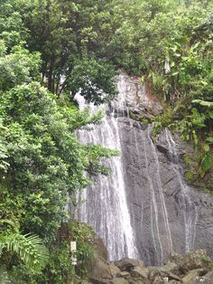 best puerto rico places to Porto Rico Places to Visit Больше информации на нашем сайте Porto Rico, Costa Rica, Rio Grande, Vacation Trips, Vacation Spots, Ecuador, United States Forest Service, El Yunque Rainforest, El Yunque National Forest
