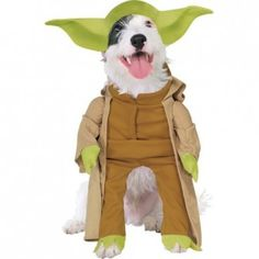 000d3b406be Disfraces para Mascotas en Halloween - Disfraces Star Wars para perros