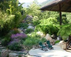 jardin style exotique, en pente avec végétation