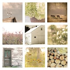 "Home Decor Set of 9 Country Living Photos, 8""x8"" each, soft, golden, yellow, farmhouse, rustic, cottage chic, floral, barn, dreamy. $110.00, via Etsy."