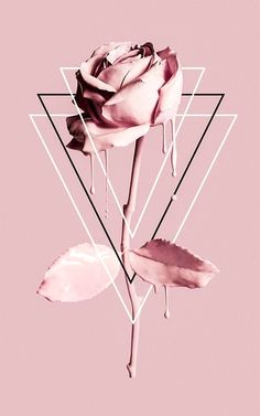 Fondos de iPhone y Android: Paintdripping Rose Wallpaper para iPhone y Andro . - iPhone and Android Wallpapers Tumblr Wallpaper, Robot Wallpaper, Wallpaper For Your Phone, Cute Wallpaper Backgrounds, Pretty Wallpapers, Galaxy Wallpaper, Mobile Wallpaper, Laptop Backgrounds, Laptop Wallpaper